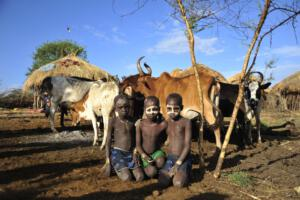 Mursi Boys and cattle