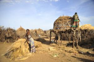 Nyangatom women repairing a supplier hut