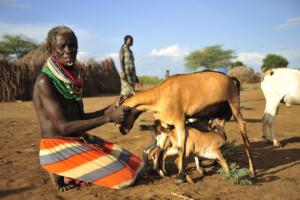 Nyangatom Woman with goats