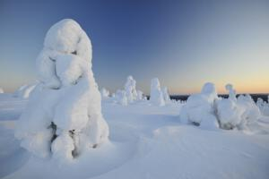 Riisitunturi Nationalpark, Posio, Finnland