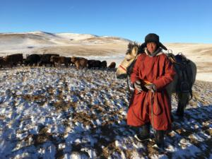 herder, Outer Mongolia