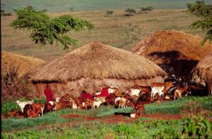 Massai_Dorf_Serengeti